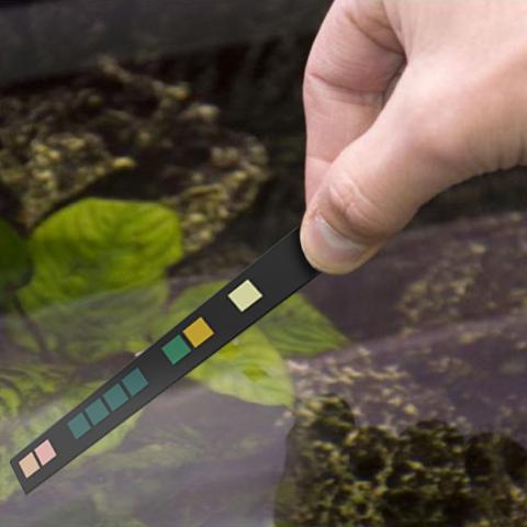 WAACS Velda Aqua Tester Pro - Test strip